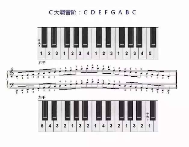 C大调音阶