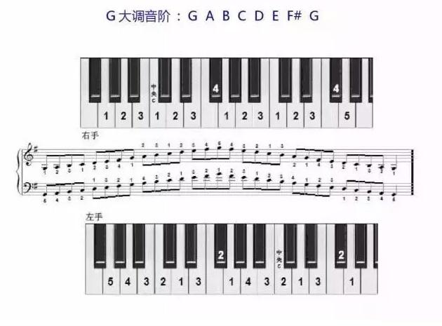 G大调音阶