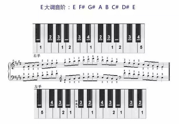 E大调音阶