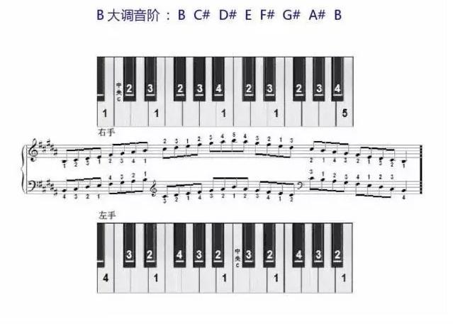 B大调音阶