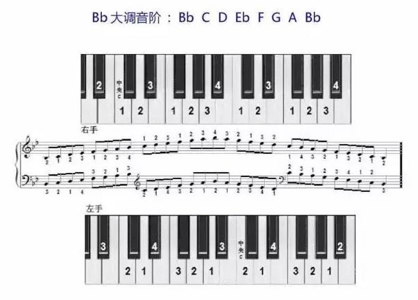 Bb大调音阶