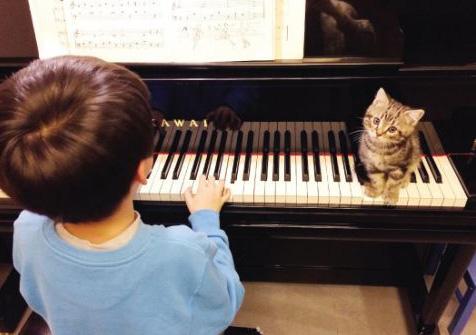 孩子刚学钢琴 家长应该如何配合?