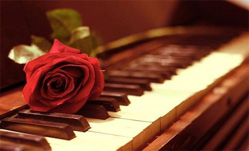 学钢琴贵吗?来得及吗?多久能学会?…成人学琴全解答