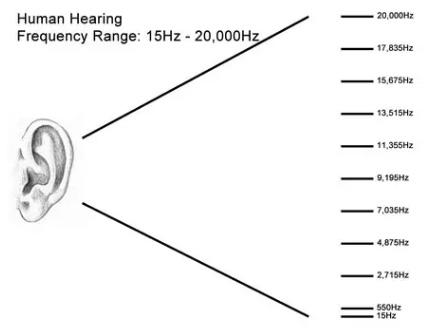 正常人能听见的范围是15赫兹到20000赫兹左右