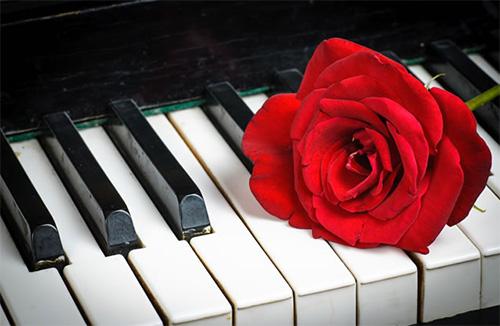 十年,一位钢琴学员讲述(献给所有正让孩子学琴的母亲)