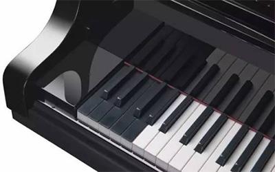 世界上键盘最多及最大的钢琴