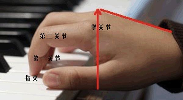 """""""弹钢琴手指要立起来""""的正确理解"""