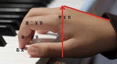 """为什么总说""""弹钢琴手指要立起来""""?"""